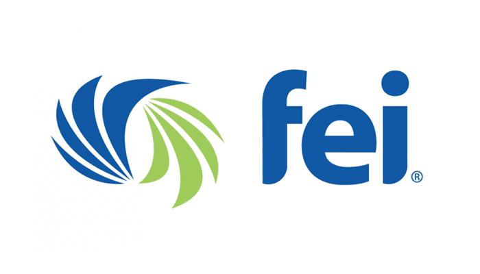 FEI (Financial Executives International)