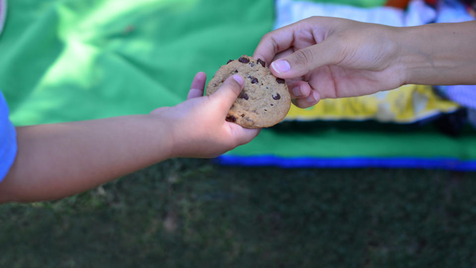 A child's hand passing a cookie to an adult's hand