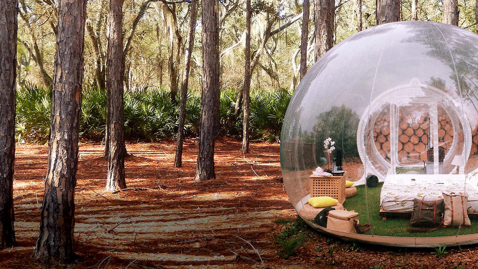 See through bubble tent in a forest