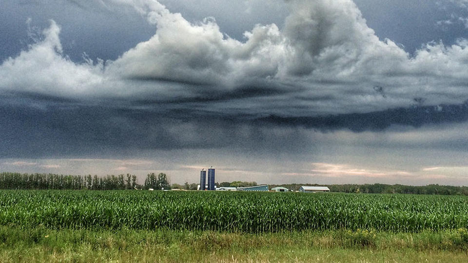 Rain cloud in the distance over a field